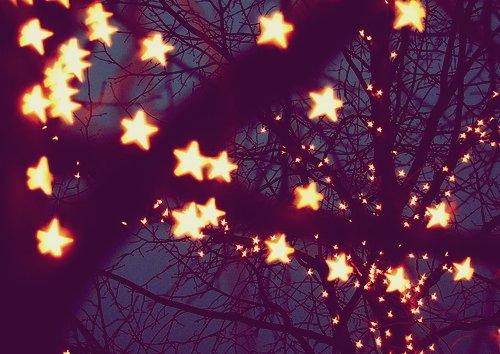 cute-light-love-photography-pretty-Favim.com-403789