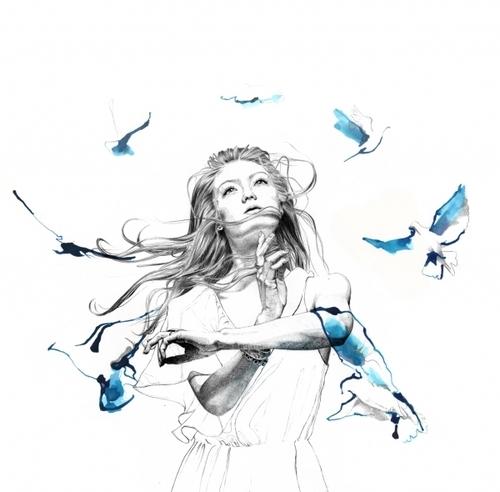 art-bird-birds-black-blue-Favim.com-338459